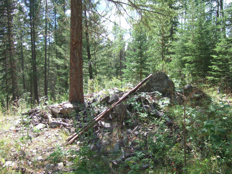 Woodjam Discovery Outcrop